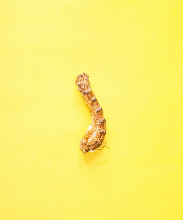 Friandise masticatoire pour chien cou de poulet