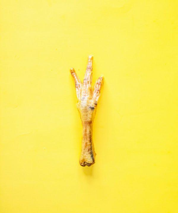 Friandise masticatoire pour chien patte poulet