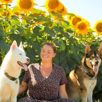 Une personne et ses deux chiens